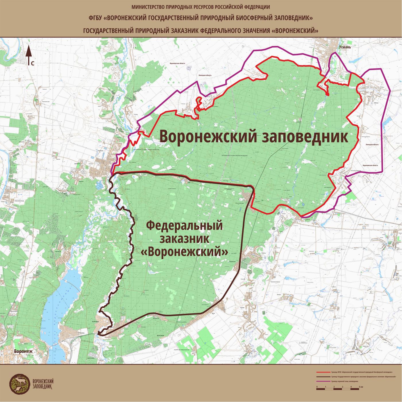 Доклад о воронежском государственном заповеднике 6164